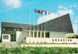 50 Granville L'Aquarium Marin (2 Scans) - Granville