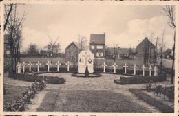 Arendonk Arendonck Voorheide Militair Kerkhof Oorlog 1940-45 - Arendonk