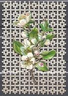 Découpi Fleur De Fruitier Sur Bristol Ajouré - Fleurs