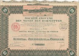 SOCIETE ANONYME DES MINES DES BORMETTES - ACTION DE JOUISSANCE  - ANNEE 1924 - Mines
