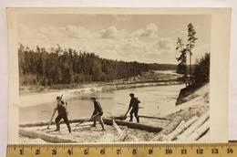Photo Vintage. L'original. Alliez La Forêt. Chevrons De La Forêt. Lettonie D'avant-guerre - Berufe