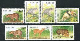 BELIZE 1989 WILD ANIMALS - Belize (1973-...)