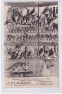 LE PLAFONS Par GERBEPAL : Naturaliste CLAUDON (préparation Et Montage D'animaux Et Oiseaux) - Très Bon état - Autres Communes