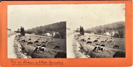 """GRUNDHOF-CHATEAU DE VILLERS """" - Carte Stereoscopie - Vue Pres Du Château De Villers  Panoramique - Berdorf"""