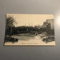 LIBAN - TRIPOLI / Nahr (fleuve) Abou-Ali 11 HM - Liban