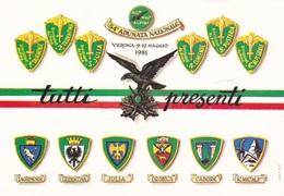(TEM032) - VERONA - 54ESIMA ADUNATA NAZIONALE ALPINI (1981) - Regiments