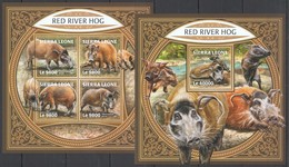 RR632 2017 SIERRA LEONE FAUNA WILD ANIMALS RED RIVER HOG KB+BL MNH - Postzegels