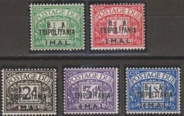 Tripolitania B.A.1950 Segnatasse SaN°6-10 5v Cpl MNH/** - Tripolitaine