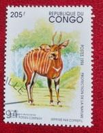 Bongo (Animaux) - Congo - 1994 - Oblitérés