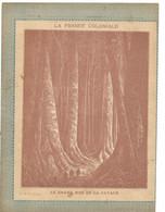 GUYANE Le Grand Bois Couverture De Cahier La France Coloniale Bien/TB 225 X 170  3 Scans - Protège-cahiers