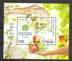 SERBIA 2020 ,International Year Of Plants Health, Flora, Fauna, Fruits Apple, Flowers, Tree, Honeybee, Block, MNH - Serbia
