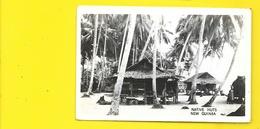 Native Huts (Grogan Danville) NEW GUINEA Nouvelle Guinée - Papua Nuova Guinea