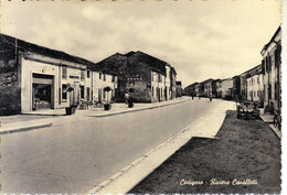 ITALIA - CODIGORO (ferrara) - Leggi Testo, Animata, Anni 50 For. Grande - 2020-B-83 - Autres Villes