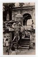 - CPSM CEYLON - THE BEARER OF THE TOOTH RELIC, KANDY TEMPLE, COLOMBO (belle Animation) - Editions Plâté N° 34 - - Sri Lanka (Ceylon)