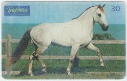 BRASIL C-274 Magnetic Telefonica - Animal, Horse - Used - Brésil