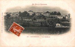 16431        MONTREJEAU  VUE GENERALE - Montréjeau