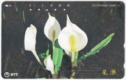JAPAN L-797 Magnetic NTT [251-375] - Plant, Flower - Used - Japan
