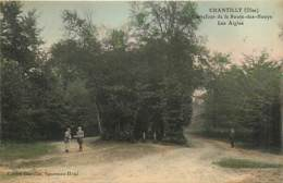 60* CHANTILLY «les Aigles «        MA105,0821 - Chantilly