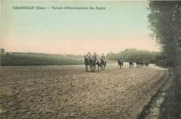 60* CHANTILLY Entrainement Des Aigles   MA105,0822 - Chantilly