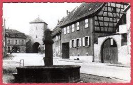 67 DAMBACH-la-VILLE - Vieille Fontaine - Dambach-la-ville