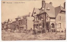 43676 -  Waremme  Avenue De Tilleuls - Waremme