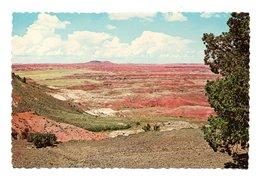 Etats Unis: AZ Arizona, Colorful Painted Desert, Arizona, Holbrook (20-687) - Autres