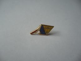 PIN'S PINS SNTPP - Pin's
