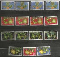 1/15  Fruits            (clasorang) - Service