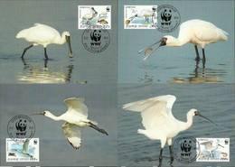 North Korea 2009 Mi 5495-5498  Max Card ( MAX ZS9 NKR5495-5498 ) - Fische