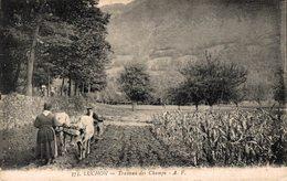16477   LUCHON  TRAVAUX DES CHAMPS - Luchon