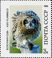 USSR Essay?? -  OWL – ASIO FLAMMEUS   -1 Stamp - Hiboux & Chouettes