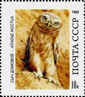 USSR Essay?? -  OWL – ATHENE NOCTUA   -1 Stamp - Hiboux & Chouettes