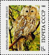 USSR Essay?? -  OWL – STRIX  ALUCO   -1 Stamp - Hiboux & Chouettes