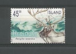 Iceland 2003 Fauna Y.T. 973 (0) - 1944-... Republique