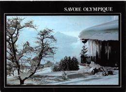 73-SAVOIE OLYMPIQUE-N°C-3648-D/0071 - Autres Communes