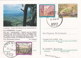 Austria 1990 Postal Stationery Card HÖRBRANZ; Fauna Frog Frosch; Sailing Boats Tourism ATM Label - Entiers Postaux