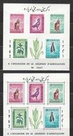 Afghanistan - Bloc - Poste Aérienne - Dentelé Et Non Dentelé - 1962 - Afghanistan
