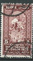 Egypte - Yvert N°  203    Oblitéré   -  Ava 28905 - Used Stamps
