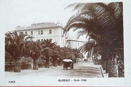 Cartolina Alassio - Viale Gibb - 1925 - Savona