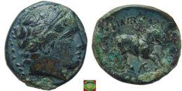 LaZooRo: Greek Antiquity - Kings Of Macedonia - AE19 Of Philip II (359-336 BC), Apollo, Horse, Monogram - Grecques