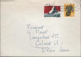 SKI-L97 - SUISSE Lettre De Zermatt Pour Colmar Aff. Pro Juventute 1965 Blaireaux - Pro Juventute
