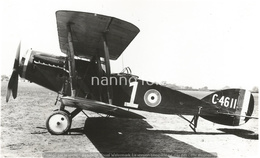 PHOTO AVION   Bristol F.2B RAF C-4611     RETIRAGE REPRINT - Aviation