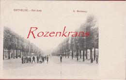 Ertvelde 1908 Het Dorp Geanimeerd (in Zeer Goede Staat) Evergem Oost-Vlaanderen Edit. R. Meuleman - Evergem