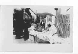 Bosnie Herzegovina - Jaice - 1935 - Bosnien-Herzegowina