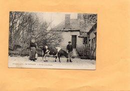 G1405 - En Touraine - Groupe Sympathique - Cows