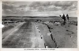 CT-03602- LA LITORANEA LIBICA - CARABINIERI IN PATTUGLIA SU CAMMELLI - VIAGGIATA 1938 - Libye