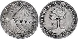8 Reales, 1829, NG M, KM 4, Ss.  Ss - Guatemala
