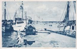 Cpa Dept 56 -  La Trinité Sur Mer - Le Môle ( Voir Scan Recto- Verso) - La Trinite Sur Mer