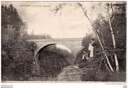 XERTIGNY  Le Pont Napoléon - Xertigny