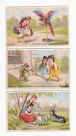 Chromo  EPICERIE LACROIX  à Besançon    Lot De 3    Femmes, Chèvre, Brebis, Perroquet, Singe     10.5 X 6.8 Cm - Altri